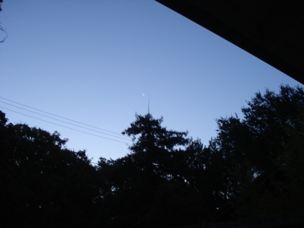 I got out this morning just in time to catch a glimpse of the moon.