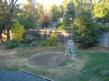 The view from the rooftop - gutters spic and span, pool put away, trees turning color. There you can see where I killed my lawn to put the pool last year, worked out great.
