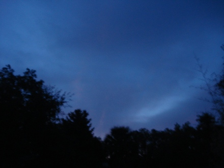 I don't know if my camera can catch the incredible purple that I saw in the sky this morning.
