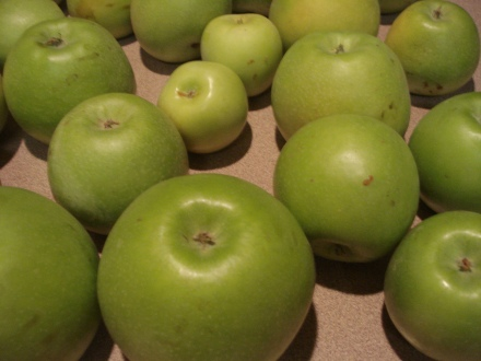 I wasn't a huge fan of green apples until I grew my own. These are  very sweet, feel good on your stomach in the morning.