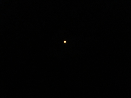 I'm sorry this is the best I could do with my little digi-cam - the moon was huge and very red this morning.