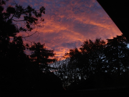 Red sky at morning - quick, get your rain barrels in place under those downspouts!