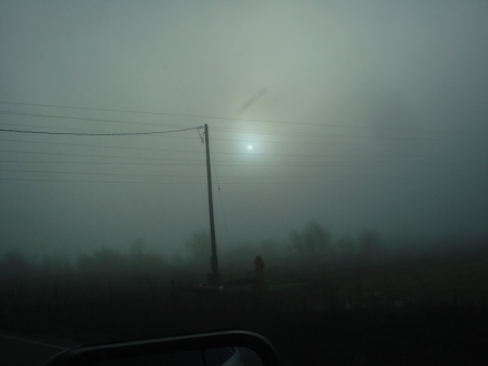 The fog  even ate the sun.