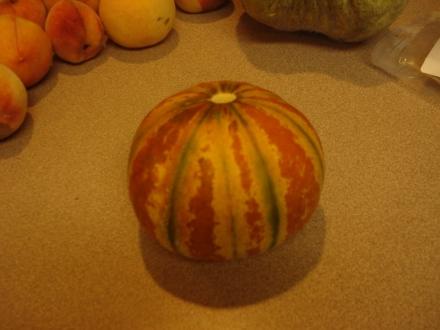 "This Kalihari melon had fallen off the vine when we found it - ""dead ripe""."