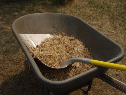 If you take a close look into the wheel barrow, you'll see skads of those nasty little barrel clover stickers.