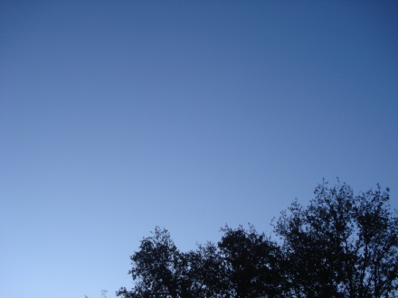 I can see Venus without enlarging but I know where to look.