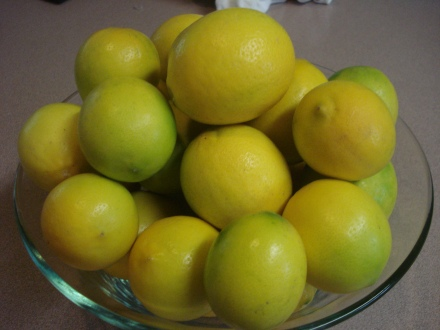 I was shocked to see them already turning bright yellow. They smell fantastic.