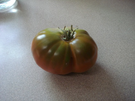"This is a ""Paul Robeson"" tomato. If you have never heard of Paul Robeson, you should read up on the guy, very important person."