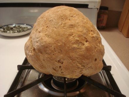 And here it is, a very authentic looking loaf of sheepherders bread!