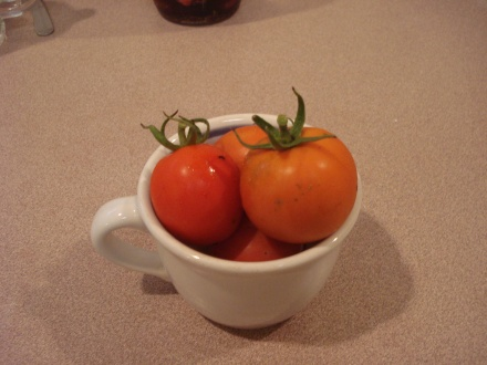 My husband wandered into the garden with a cup of coffee this morning and came back with a cup of tomatoes.
